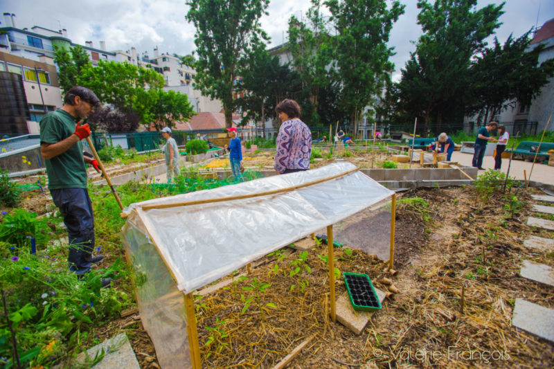 Bienfaits du jardinage : jardiner est bon pour la santé