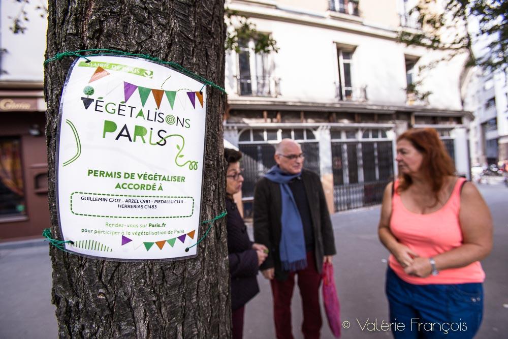Végétaliser un pied d'arbre dans la rue attire toujours l'attention et la curiosité des passants.