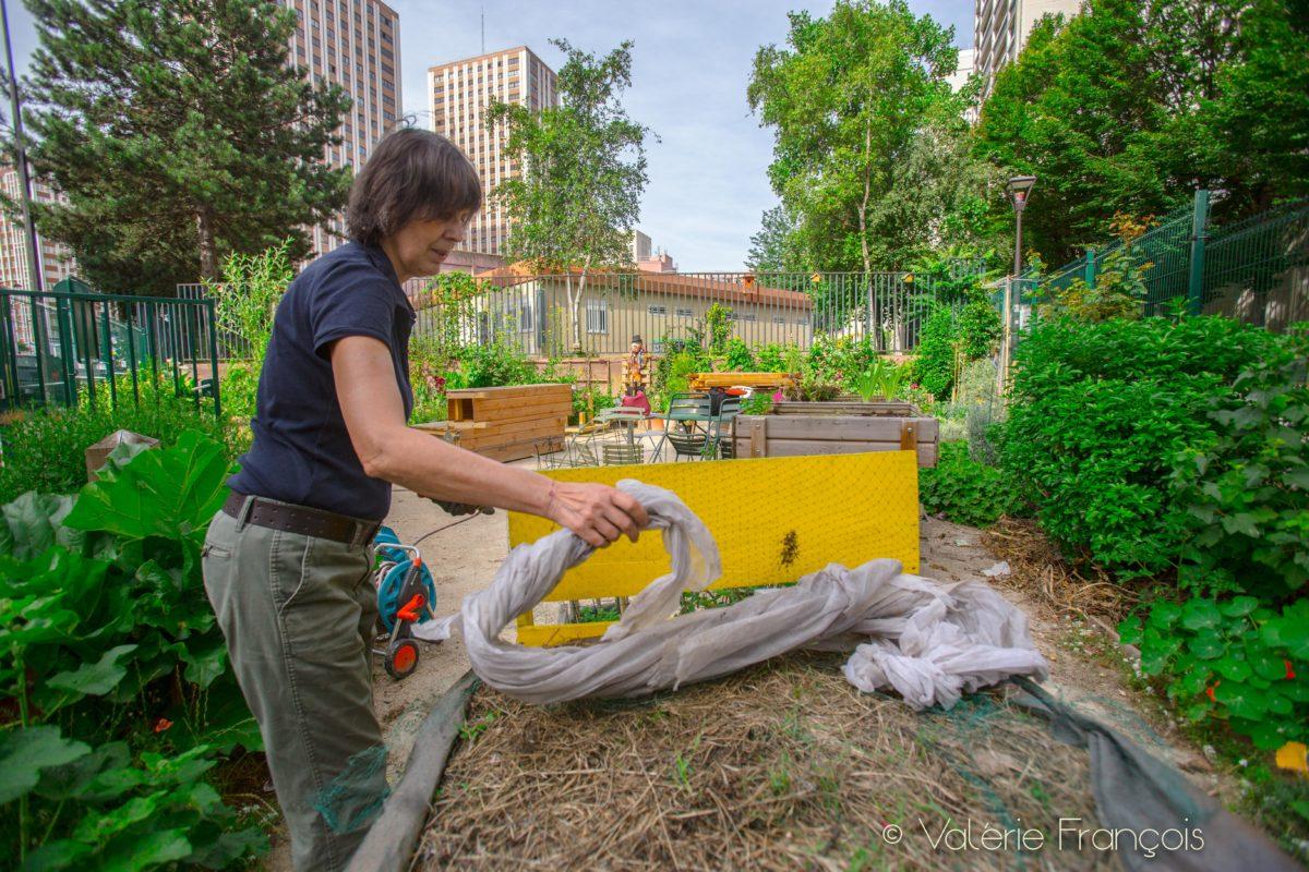 En s'occupant du jardin, Véronique s'est intéressée aux techniques de permaculture. Elle teste beaucoup de techniques pour enrichir la terre.