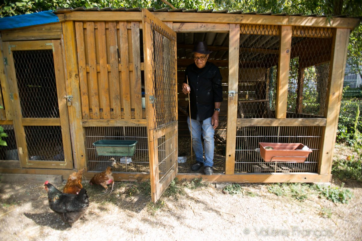 Il y a un poulailler fabriqué uniquement en matériau de récupération. Deux personnes s'en occupent et récupèrent les œufs de nos 5 poules.
