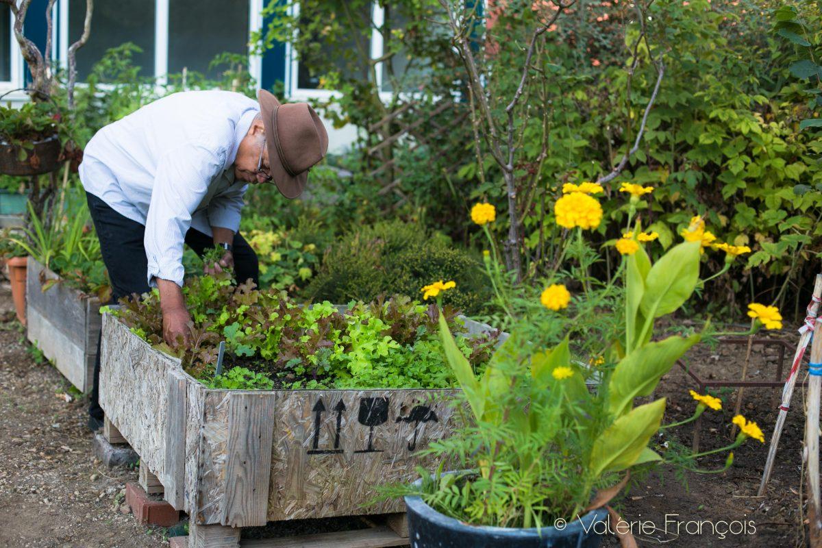 Je continue à donner des conseils au jardinier car beaucoup arrivent en pensant que c'est facile de jardiner.