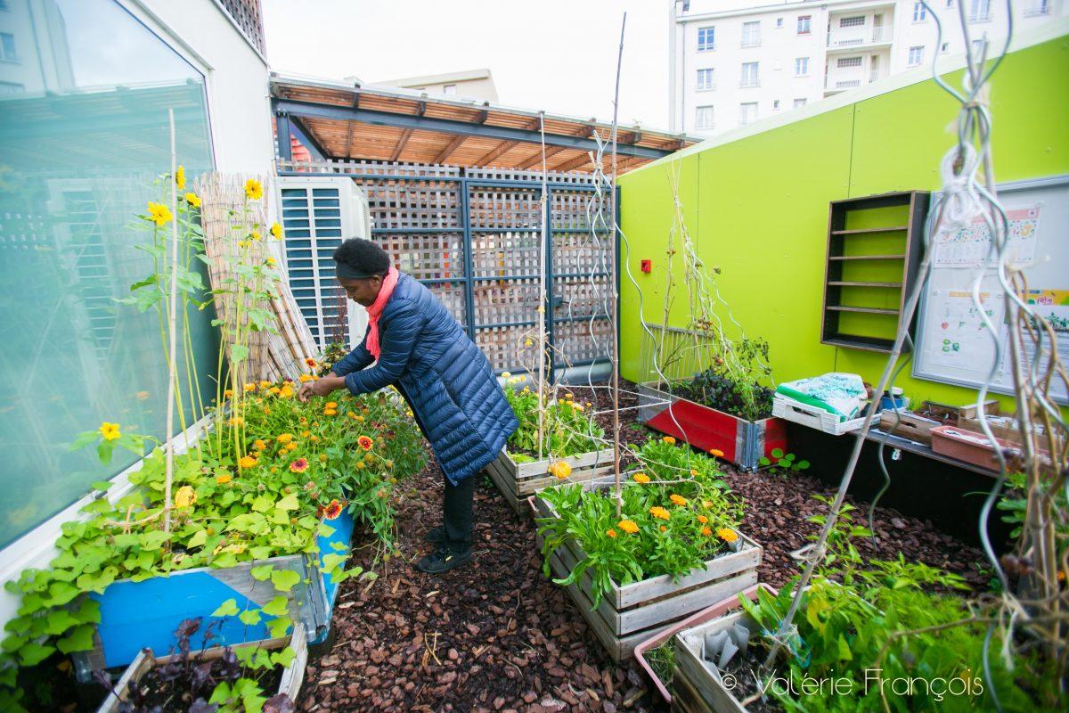 Dans le jardin nourricier, Valery Tsimba aime montrer aux enfants la diversité de la nature