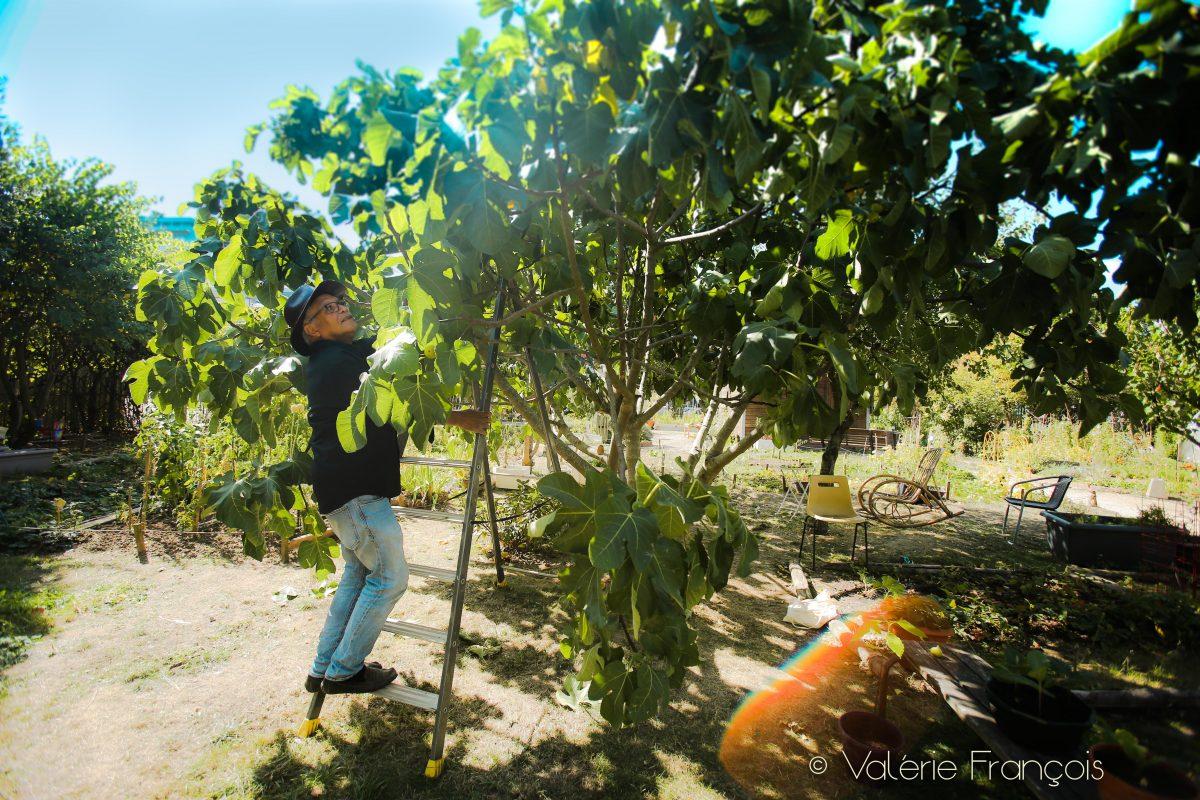 André est arrivé par hasard dans ce jardin il y a 20 ans. Ancien métallier, il est devenu jardinier suite à un accident du travail.