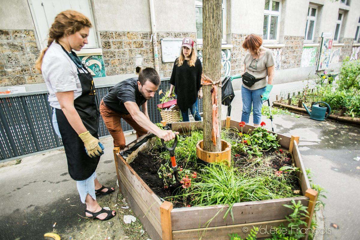 Végatalisation de Paris : Les pieds d'arbre végétalisés du Village Jourdain
