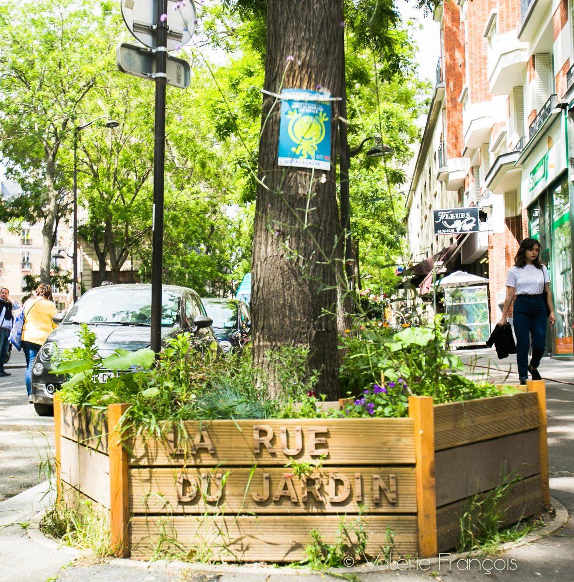 Égalisation de Paris : Les pieds d'arbre végétalisés du Village Jourdain