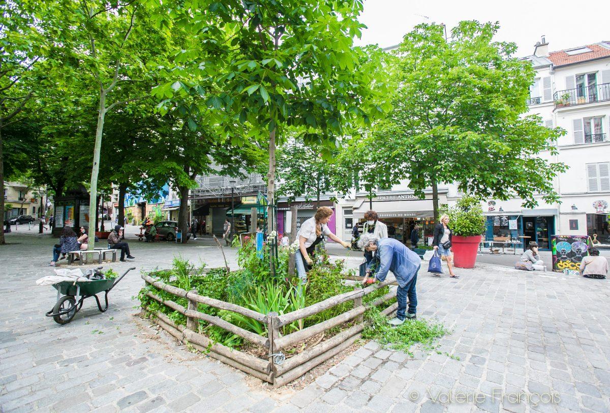 Végétalisation de Paris : Emilie et Bernadette sur la Place des Rigoles.