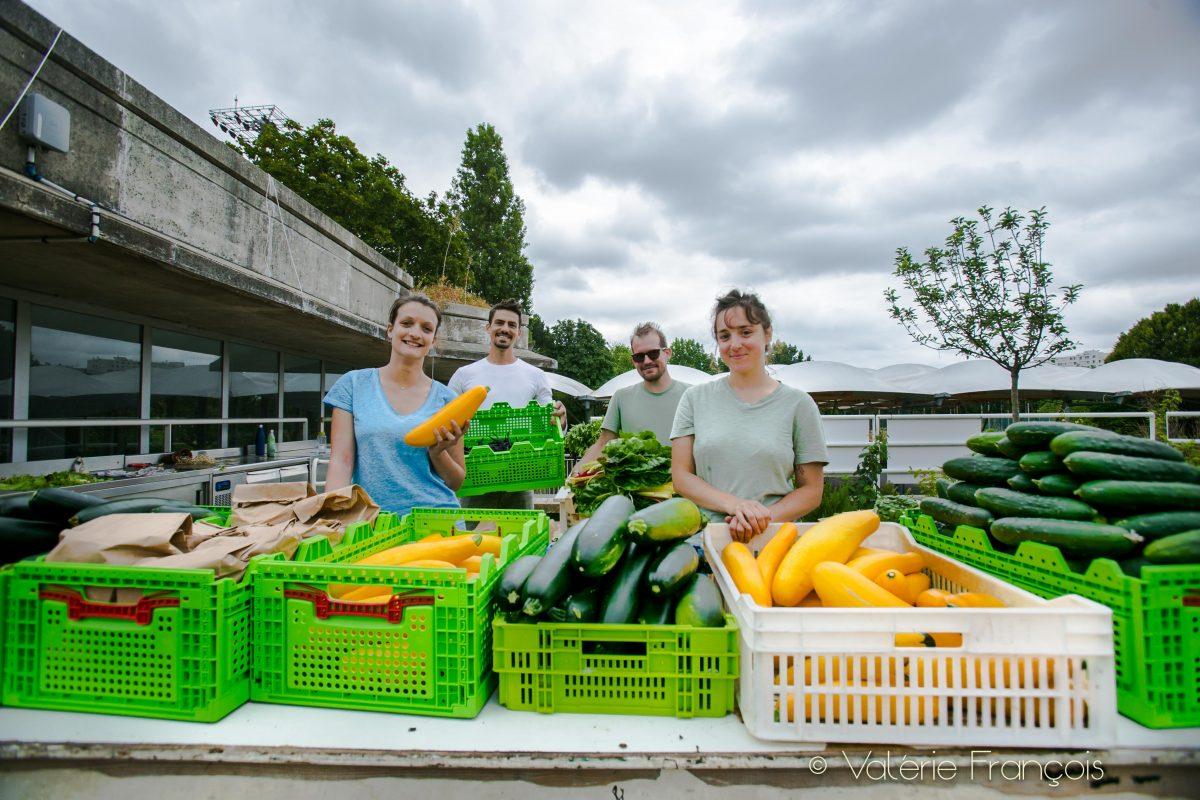 Elise, Cyril, Mathieu et Juliette, fiers de la récolte du jour !